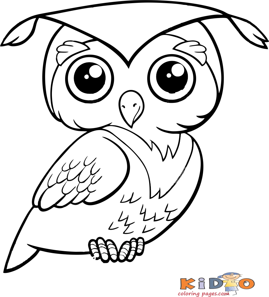 - Owl Coloring Pages Printable - Kids Coloring Pages