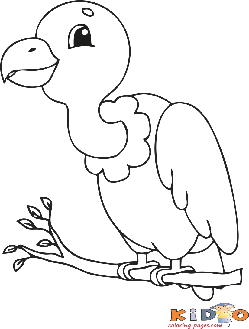 vulture coloring pages print out bird