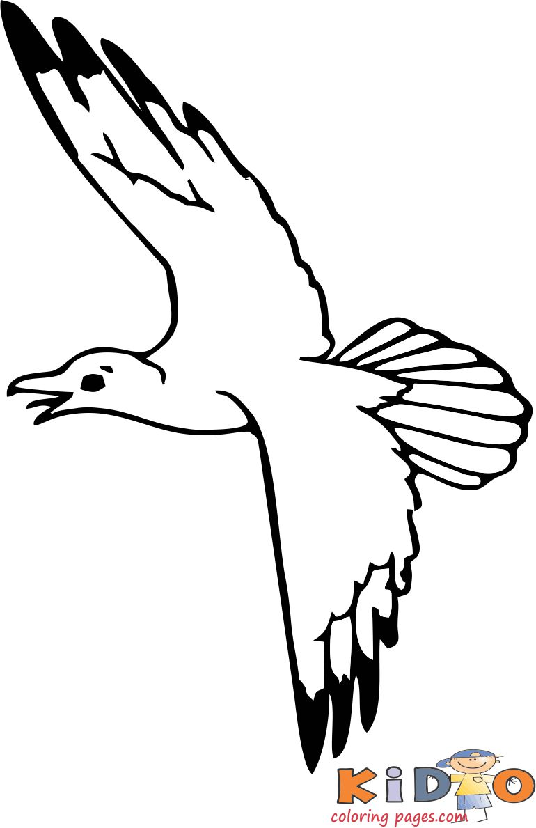Pages to color Seagull for kids print out