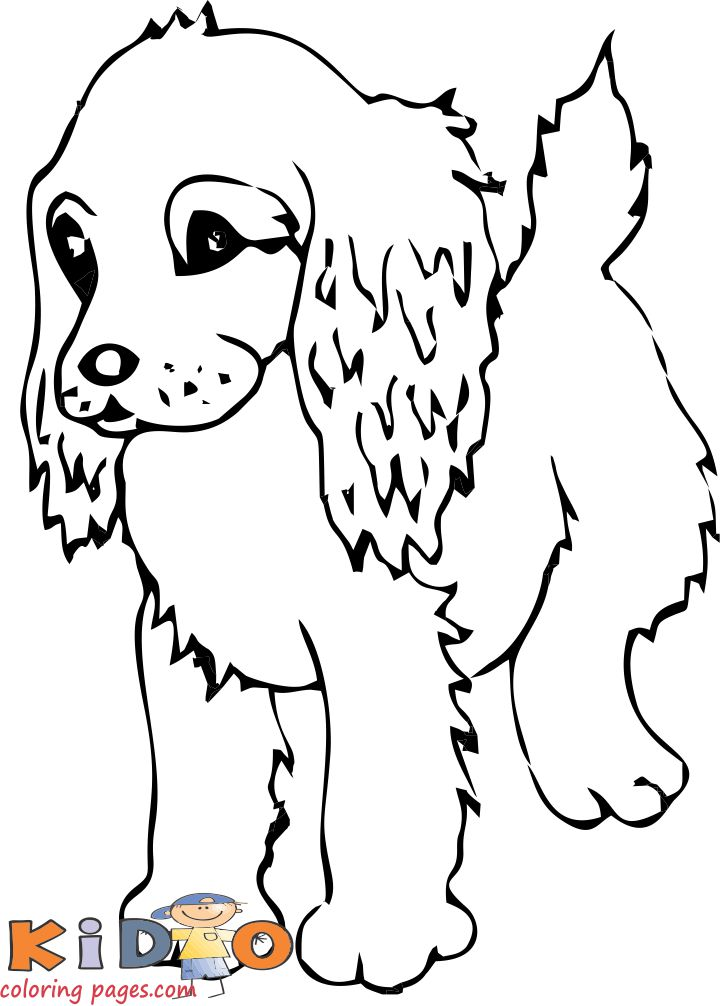Cocker spaniel cute dog coloring pages