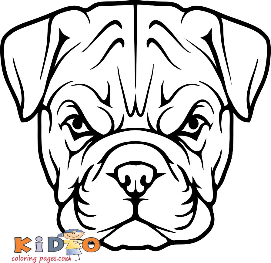 bulldog a dog coloring pages