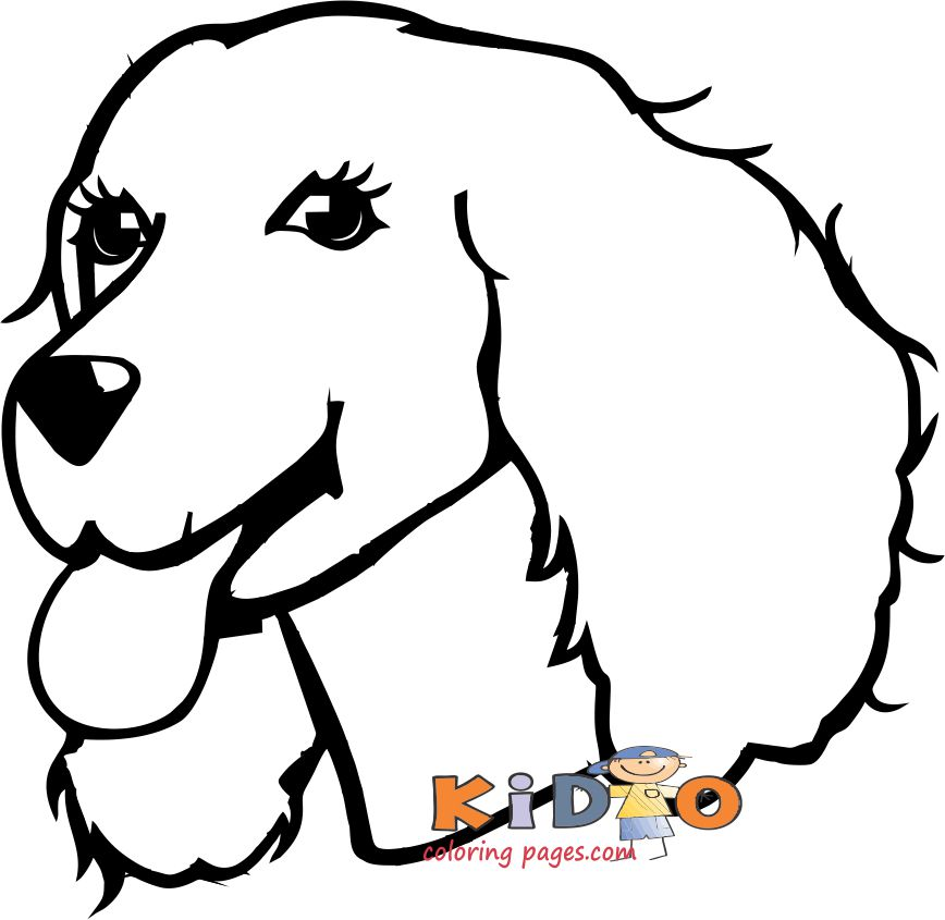 Cute coloring pages of dog cocker spanie