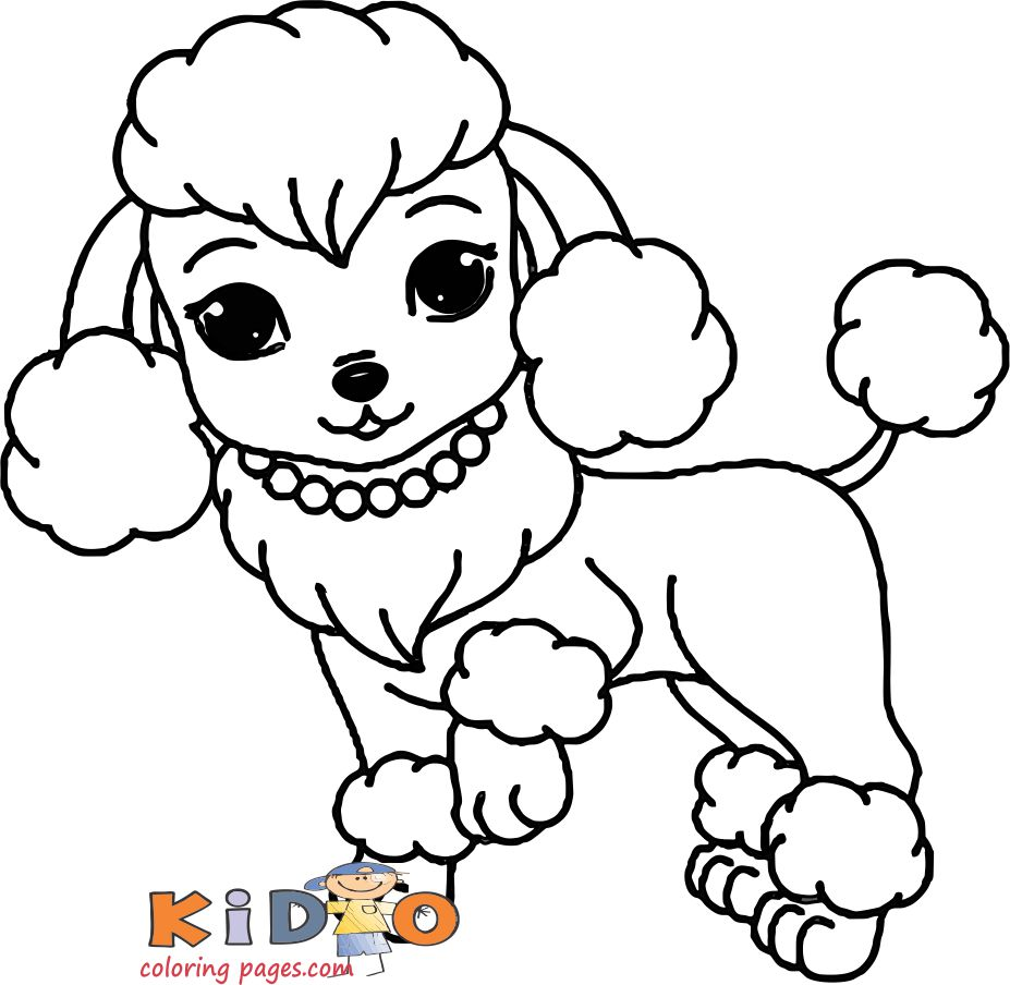 cute coloring pages poodle for kids