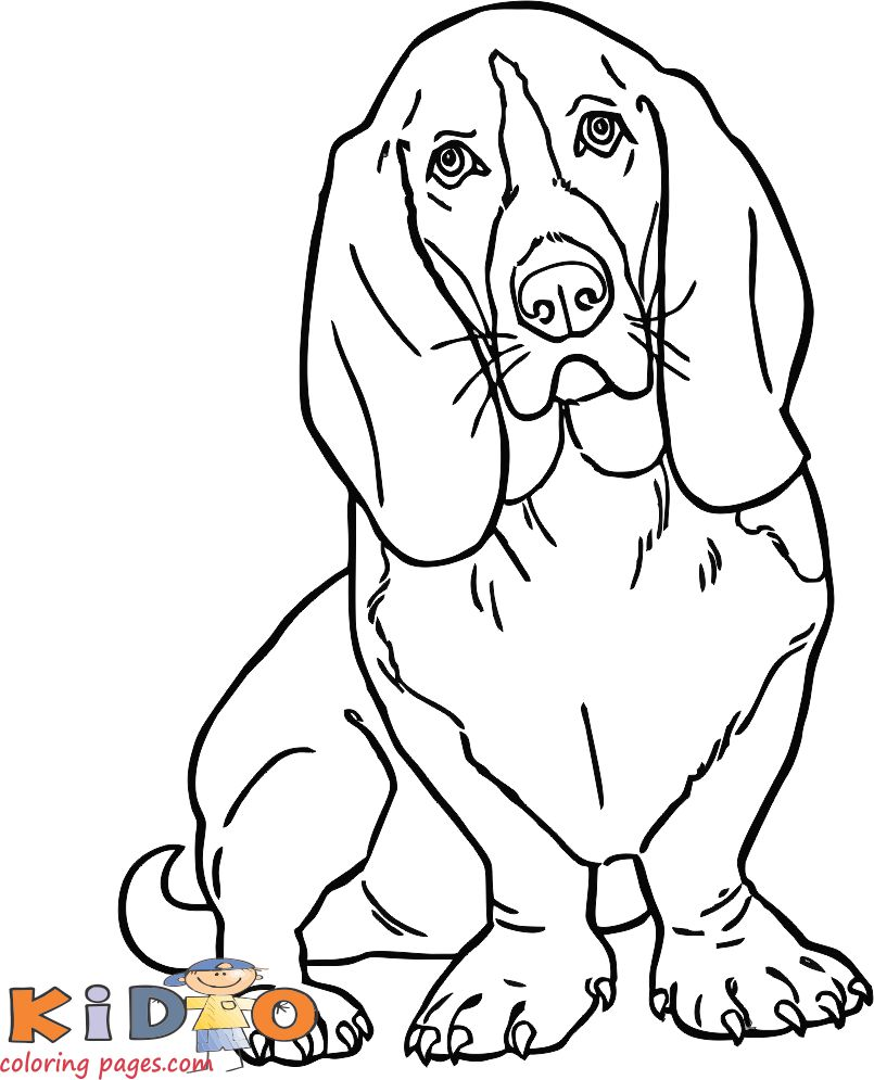 cute dog slinky coloring pages